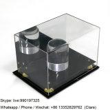 Grand cas d'exposition acrylique fait sur commande professionnel