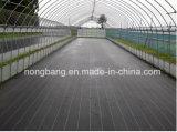 Cubierta de tierra tejida plástico del control de Weed