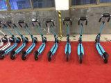 전기 스쿠터 250W를 접히는 여행자 지대 사업 최고 선택