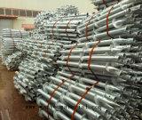De Schroef van de grond voor de Bouw Asia@Wanyoumaterial van het Hout. Com