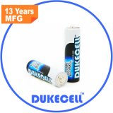 Europa-Standardanerkanntes, Batterie AA/Lr6