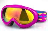Revoの青い上塗を施してある競争のスキーは目の防護眼鏡を遊ばす