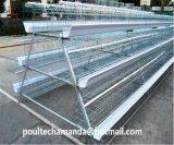 Bon système automatique de matériel de cage de poulet d'éleveur des prix et de qualité (un type bâti)