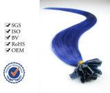 Il grado superiore brasiliano U-Capovolge i capelli di punta del bastone dei capelli
