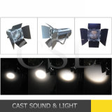Studio-Licht des Stadiums-200With300W des Profil-LED mit lautem Summen