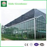Estufa de alumínio comercial da folha do policarbonato do frame para Vegebable