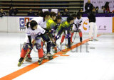 Rollen-Hockey-Meisterschaft-Fußboden-Fliese, internationaler Standard-Hockey-Bodenbelag (Nicecourt- Goldsilber-Bronze)