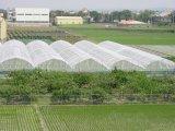紫外線抵抗のHDPEのバージンの温室のための物質的な反昆虫の網および農業果樹園および耕作