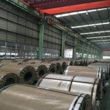 중국 공장 0.13-3.0mm 최신 담궈진 Gi Galvanzied 도매 강철 코일
