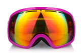 L'adulto polarizzato dell'obiettivo del PC mette in mostra gli occhiali di protezione di snowboard di Eyewear