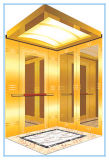 Toutes Sortes D'ascenseurs Comprenant le Passager/cargaison/fret/hôpital/à la Maison/villa/la Visite Touristique/Dumbwaiter/observation