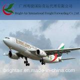 De internationale Cargadoor van de Makelaar van de Vracht van de Lucht van de Logistiek van China aan Chili