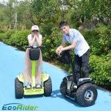 Chariot elétrico de pé elétrico da roda da fábrica dois de Shenzhen
