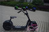 Mag都市スクーター80kmの範囲2の車輪の電気オートバイ