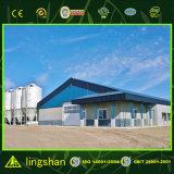 Het geprefabriceerde Modulaire Landbouwbedrijf van de Kip van het Huis van het Gevogelte