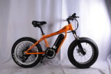 Da montanha gorda do pneu de 20 polegadas bicicleta elétrica (OKM-1335)