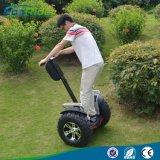 2つの車輪の電気スクーターの価格の中国熱いSegの自己のバランスをとるスクーター