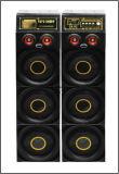 Neue Ankunft verdoppeln ein 8 Zoll bluetooth Prefessional Karaoke-Lautsprecher