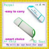 요인 가격 캡슐 모양 USB 섬광 드라이브 (GC-C87)