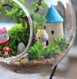 Вися стеклянная ваза DIY засаживая Hydroponic контейнер цветка завода