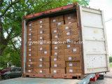 Behälter-Sicherheitsnetz-/Container-Ladung-Netz-/Container-Netz