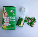 Le régime chaud de vente détruisent des pillules de régime de capsule de poids pour la perte de poids