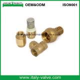 Valvola di ritenuta d'ottone forgiata dell'oscillazione (AV5010)