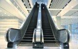 Vvvf Drive Escalera Interior para Supermercado con Velocidad 0.5m / S