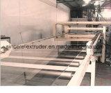 Chaîne de production d'extrudeuse d'échappement de vis de double de feuille d'animal familier (aucun séchage de cristallisation)