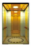 Ascenseur de Passener de Pièce-Moins de machine avec du temps et les matériaux de construction d'économie