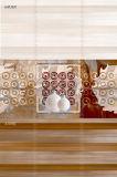 Mattonelle della parete della cucina della stanza da bagno per il Pakistan 250X750mm 300X600mm