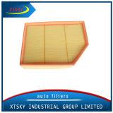 Filtro dell'aria 13717521033 di rendimento elevato di fabbricazione di Xtsky con il prezzo competitivo