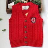 Мальчика типа Южного Кореи кардиган нового возлагает свитер Yf16022
