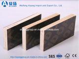 La alta película de Quanlity hizo frente a la madera contrachapada para los materiales de la construcción de edificios