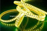 Indicatore luminoso di nastro esterno di riga 5050 LED del doppio della decorazione