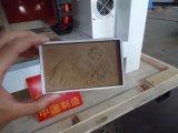 CNCの金属の彫版機械(TZJD-3030M)