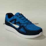 نساء زاويّة حذاء رياضة يركض [أثلتيك شو] مع يحبك فرعة حذاء