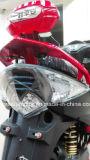 самокат 1000With 1500W электрический (орел мухы)