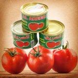 Pasta de tomate enlatada deliciosa para o macarrão 70g