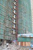 Alzamiento de elevación de la grúa de construcción del desarrollo de capacidades de la carga de la sección del mástil