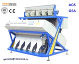 Philippinische Erdnuss-Reinigung, die Maschinerie Farben-Sorter vom China-Vsee aufbereitet