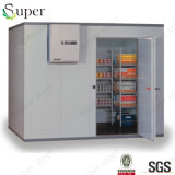 Pièce d'entreposage au froid de pièce de congélateur de compresseur de chambre froide de surgélateur