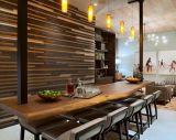 Mobilia moderna nordamericana della cucina dell'appartamento