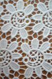 2017新しいデザインポリエステル刺繍が付いている物質的なレースファブリック