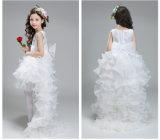 Хозяин юбки Fleabane горькfGs Fleabane Costumes этапа аспекта платья девушок сольной горькfGs
