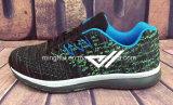 Bereift neuer bunter Sport 2017 laufende Schuhe