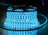 Seil-Licht der roten Farben-60LEDs SMD5630 220V IP65 LED