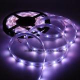 꿈 색깔 LED 지구 Ws2812b 60LED 마술 LED 지구