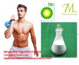 Polvere grezza Testex Testex anabolico Enanthate di purezza di 99% per la costruzione del muscolo