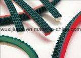 Cinghia eccellente della pinsa con il PVC superiore di verde
